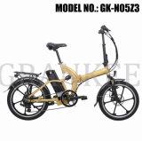 Wheel Motor Electric Bicycle with TUV En15194