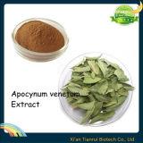Dogbane Leaf Extract, Apocynum Venetum Extract, Apocynum Extract
