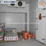 Cold Storage Room for Keeping Fruits Fresh