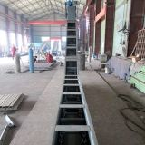 Customized Inclined Angle Pitch/Asphalt Scraper Chain Conveyor System