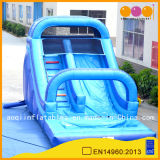 Inflatable Blue Water Slides for Kids and Adults (AQ1070)
