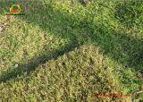 Non-Filling Artificial Grass for Garden Decoration