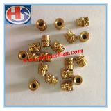Injection Molding Copper Insert Metal Processing Copper Nut (HS-TP-020)