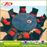 Hot Sell Rattan Furniture, Garden Set (DH-6632)