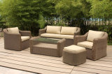 European Rattan Outdoor Furniture for Hotel Lobby and Villa (FS-2981+2982+2983+2984)