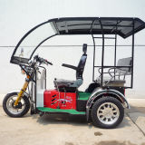 Passenger Tricycle Handicapped Trike Disabled Tricycle with Cabin (SY110ZK-E)