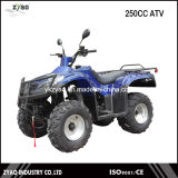200cc Air Cooled/Water Cooled ATV, Chain/Shaft Drive Big Power Quad 4 Wheelers 2016newest Quad Bike