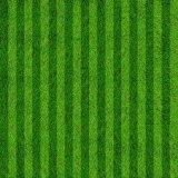 42mm Height Cross Shape Artificial Grass for Football Field