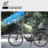 25km/H 36V Pedal Electric Bikes with Rear Rack Battery