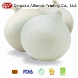 2017 New Crop Peeled White Onion