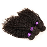 Best Quality Kinky Curly Hair Remy Hair Weaving