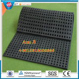 Anti-Skid Stable Mats, Comfort Stable Mats, Cow & Horses Floor Mats