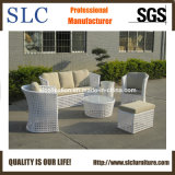 New Weave Outdoor Sofa Set/ Outdoor Furniture (SC-A7517)