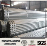 Top Quality Structural Q195 Material Pre Galvanized Steel Pipe