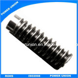 Stainless Steel Worm Gear for Inustrial Printers