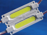 Factory Fob 1 LED Module High Light