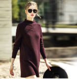 Women′s Fashion Cashmere Sweater Turtle Neck 16brdw002-1
