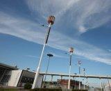 10m 80W LED Vertical Axis Wind Turbine Wind/Solar Hybrid Street Lamp (SHJ-WS1080)