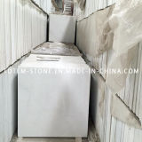 Natural Polished White Stone Marble Flooring Tile for Floor / Wall