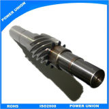 Steel Transmission Pinion Worm Gear for Inustrial Motors