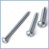 Philip Pan Head Self Drilling Screw with Zinc Plated