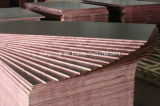 1220X2440mm / 1250X2500mm Good Quality Bronw Film Faced Plywood for Concrete
