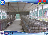 Prefabricated Poultry Building for Chicken/Pig/Cattle/Horse House (FLM-F-018)