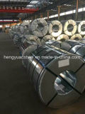 Packed Hdgi Galvanized Steel Coil Gi Steel Sheet