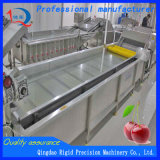 Vegetable Washing Machine Washer Bubble Cleaning Machine (QD-QP4000-800)