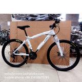 Hot Sale Cheap 26′′ Mountain Cycle