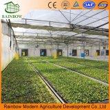 Sprinkler Irrigation System for Greenhouse Irrigation