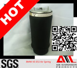 China Wholesale Supplier Air Suspension, Air Spring for BMW X5