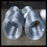 Bwg20 Elctro Galvanized Steel Wire