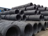 Cold Forging Wire Rod, Steel, Swrch18A