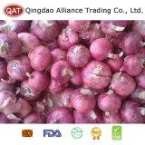 Best Price New Crop Fresh Red Onion