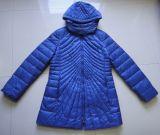 Hot Selling Winter Jacket for Women