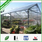 5mm Transparent Plastic Building Material Polycarbonate PC Sheets for Flower Room