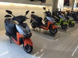 800W Mini Electric Motorcycle for Adults for Sale