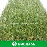 Carpet Grass and Garden Artificial Turf