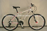 Alloy Bicycle with Alloy Frame and Steel Fork (SH-AMTB002)