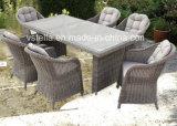 Outdoor New Aluminum Garden Modern Rattan Furniture