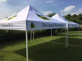 Competitive Price 2*2m Outdoor Folding Gazebo Canopy Tent