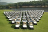 Solar Power 4 Seater Electric Golf Carts