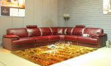 Hot Selling Leisure Leather Sofa (H3016)