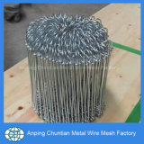 PVC Coated Galvanized Double Loop Tie Wire Factory Price
