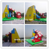 Inflatable Tunnel Water Slide with Pool