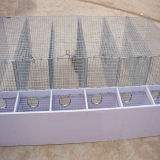 Stainless Steel Dog Bird Parrot Cage