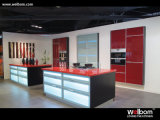 2015 New Welbom Lacquer Painted Custom Modern Kitchen Furniture