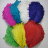Artificial Bulk Ostrich Feathers Cheap Ostrich Feathers 15cm to 75cm Fancy Colorful Wholesale Ostrich Feathers