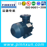 Water Proof Submersible /Electric Ex Proof Motor